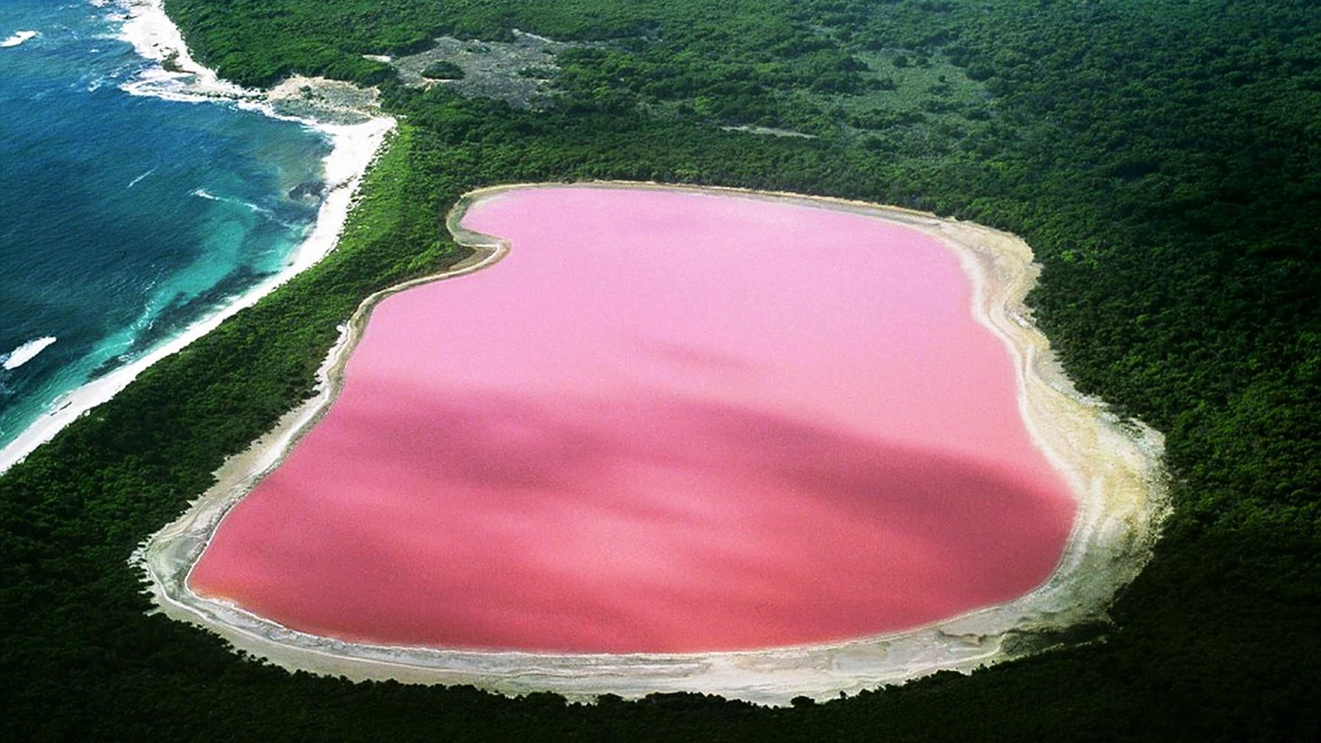 مکانهای عجیب و دیدنی دنیا: دریاچه صورتی رنگ در 10 نقطه از زمین