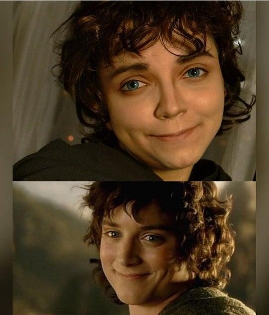 فرودو در فیلم The Lord of the Rings