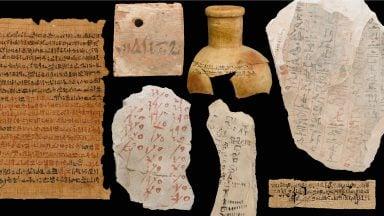 5 مورد آزمایش DNA اشیاء باستانی