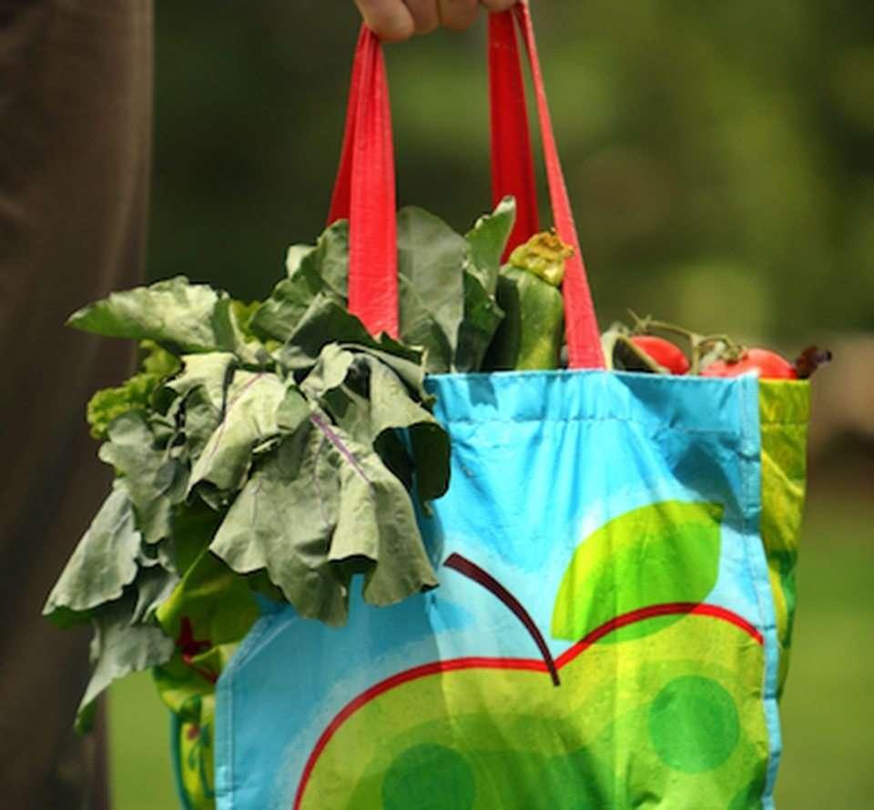 کیسههای خرید پلاستیکی بازیافتی در دوران شیوع ویروس کرونا