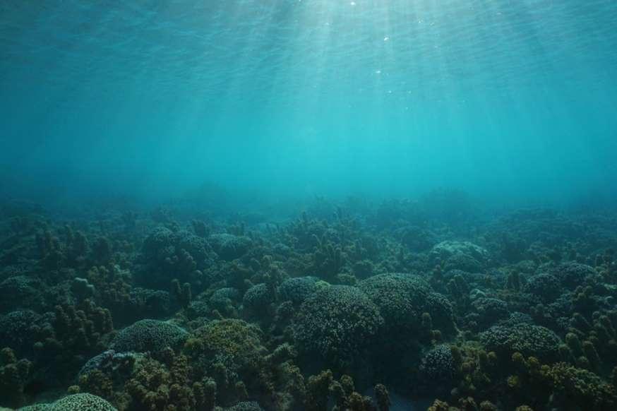 20 نمونه دانش طبیعی - 1. تمام آبهای روی کره زمین، توپی به قطر 860 مایل تشکیل میدهند. حدود 71 درصد از سطح زمین پوشیده از آب است و 7,917.5 مایل قطر دارد.