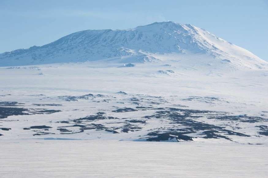 20 نمونه دانش طبیعی - 5. جنوبگان تنها قاره بدون پوشش گیاهی در زمین است.