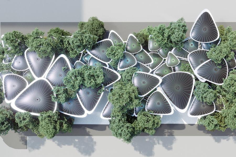 پلان کلی از معماری پایدار درخت نخل  آینده گرایانه
